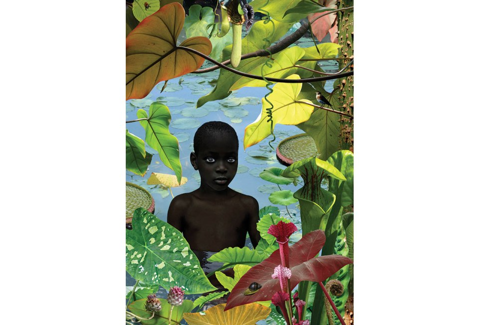 Ruud van Empel, World #13, 2006, Cibachrome, dibond, plexiglas 47 x 33 inches (118 x 84 cm)