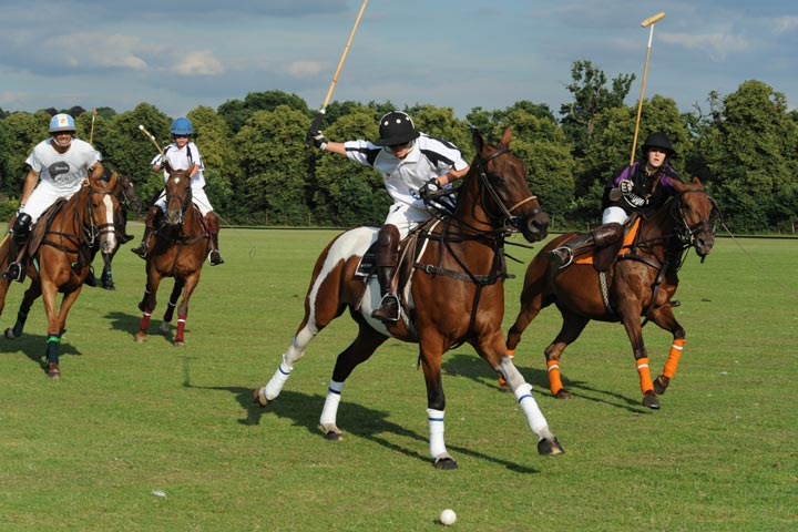 http://www.caminorealpolo.com/Polo-at-Camino-Real-Experience-Country-Club-Argentina.html