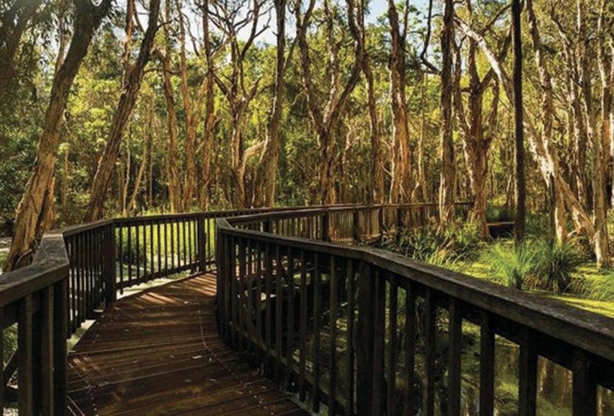 Foto: https://www.tripadvisor.com.au/LocationPhotoDirectLink-g658863-d4345803-i166583134-Ramada_Couran_Cove_Island_Resort-South_Stradbroke_Island_Gold_Coast_Quee.html