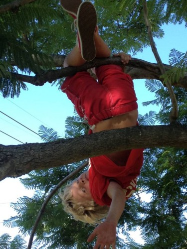 But he's really good at climbing trees!