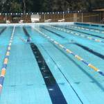 The Swimming Carnival