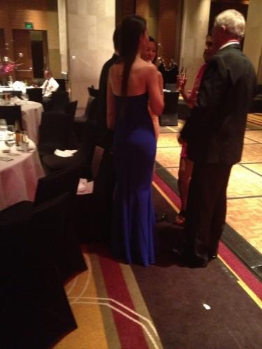 The best image I could get of the infamous sapphire blue dress
