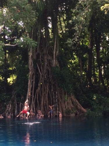 The giant tree with the ladder.  Sapphire-blue water.