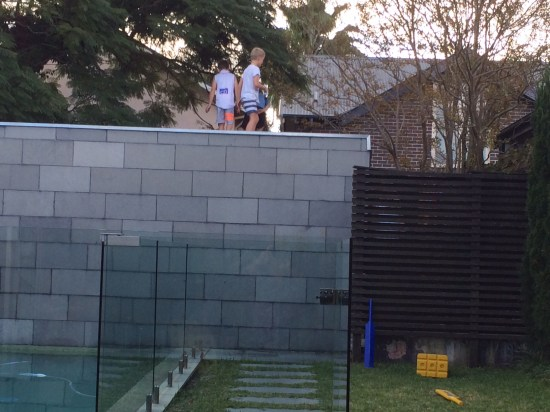 That's the boys on the garage roof