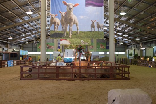 Animal Farm Exhibit