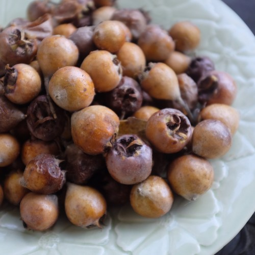 Medlars left to soften and brown