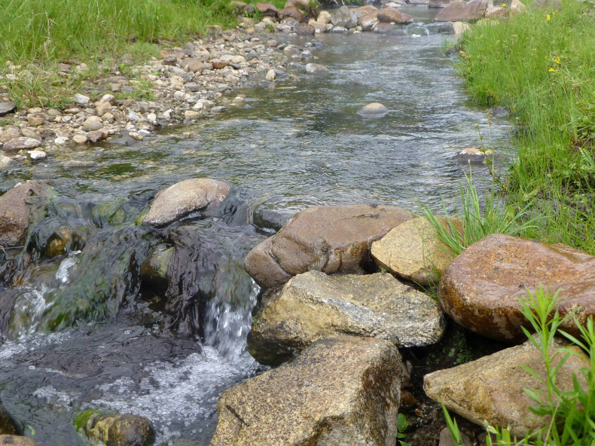 Willow Creek Hot Springs in Idaho Video