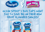 Ocean Spray Fruit Flavored Snacks: Coupon