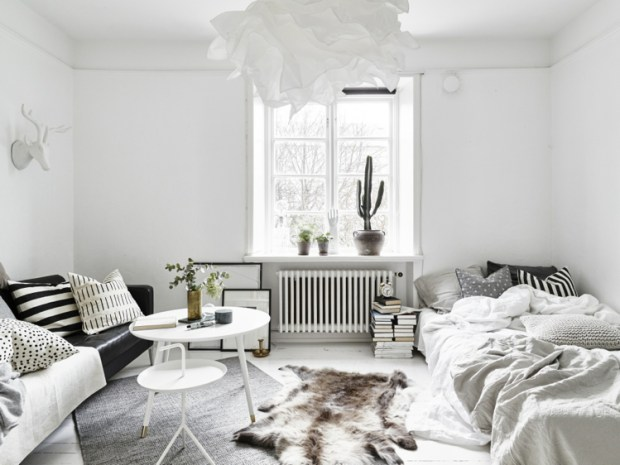 Monochrome-living-room-bedroom.-Scandinavian-cozy