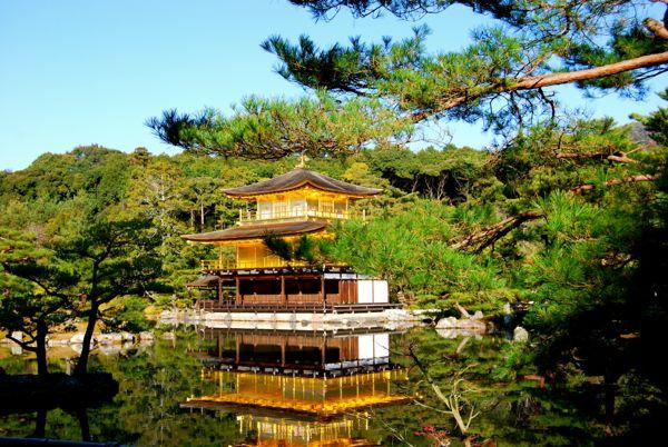 Viaje a Japon: Templo dorado Kyoto