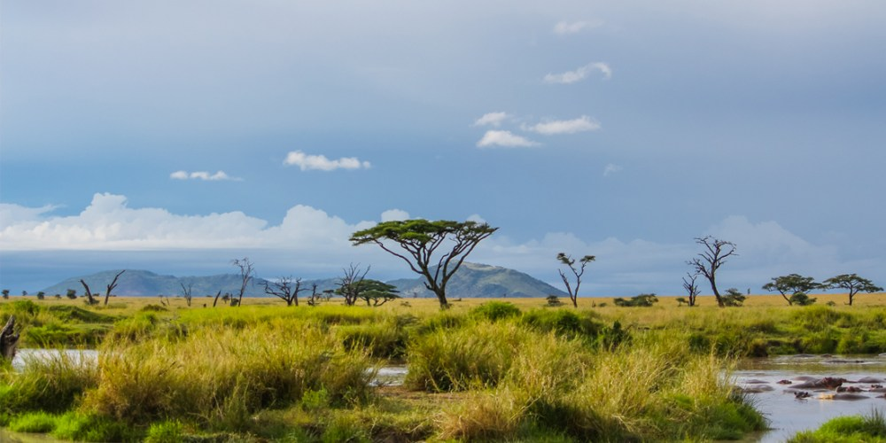 africa-feature-landscape