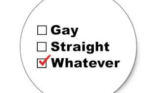 gay_straight_whatever_bisexual_sticker-p217088317632754087qjcl_400