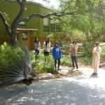 Students at the The Contemporary Austin Art School at Laguna Gloria