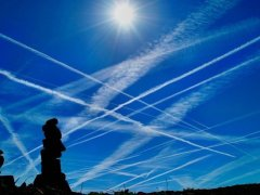 Foods & Supplements For Chemtrail Protection