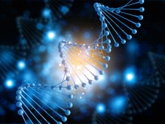 Everything Is About Frequency, And Your DNA Is The Ultimate Antenna