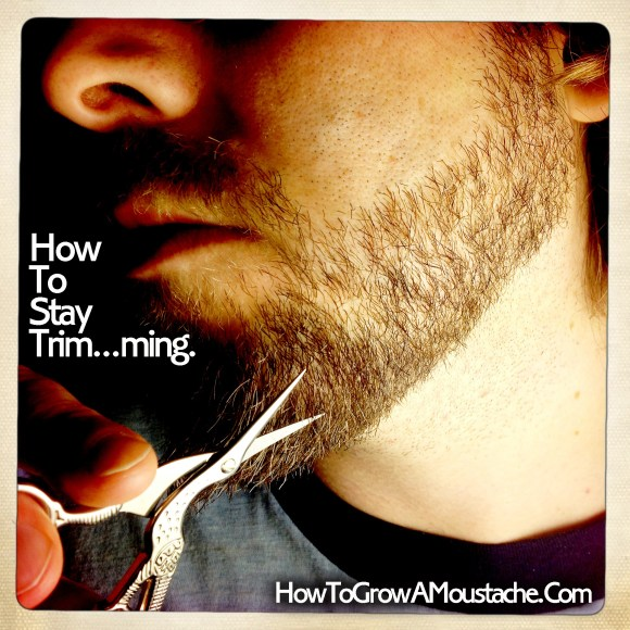 Grooming Mistakes You Don't Know You're Making or A Guy's Guide To Grooming