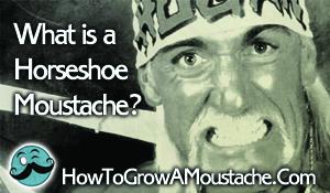 What is a Horseshoe Moustache?