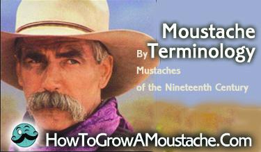 Moustache Terminology
