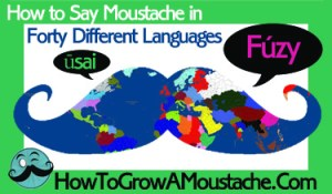 How to Say Moustache in Forty Different Languages