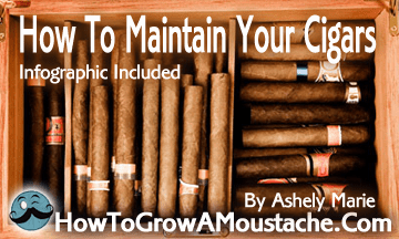 How To Maintain Your Cigars