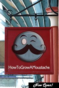 howtogrowamoustachestore.com