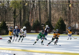 hockeyrink-backyard