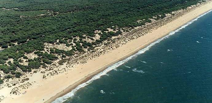 El Gobierno andaluz se reserva la última palabra sobre la construcción en el litoral.