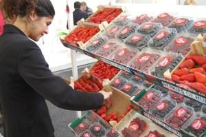 Los frutos rojos de Huelva tienen una gran salida en los mercados internacionales.
