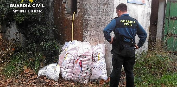 Un guardia observa parte de lo sustraído en un robo en el campo.