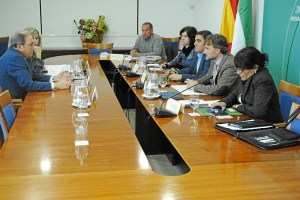 Reunión de la comisión de seguimiento del plan de choque por el empleo.