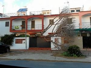 calle Mairena del Alcor.