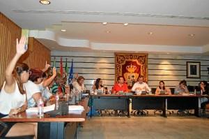Pleno 8 de agosto (4)