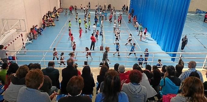 voleibol san bartolome-489