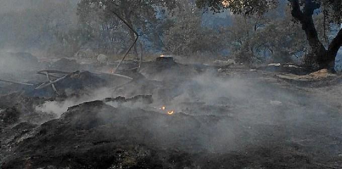 Imagen del incendio en el Camino de los Lobos de Lucena del Puerto.