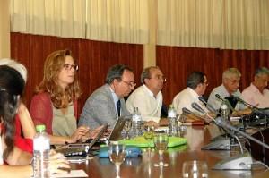 Consejo Gobierno 24.07.15 (2)
