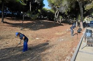 Desarrollo Local PFEA El Portil (4)