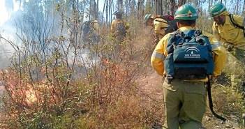 Imagen de archivo de efectivos del Plan Infoca actuando en un incendio en Zalamea (Foto: Plan Infoca)