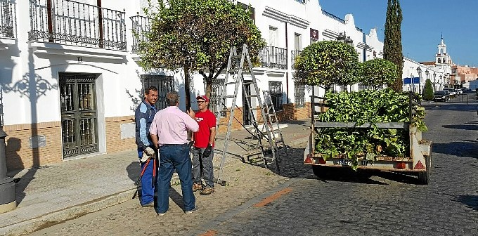 El concejal de los Servicios Generales Juan Hernandez ha supervisado estos trabajos