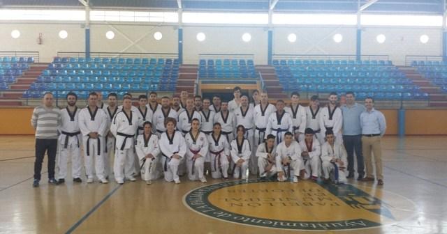 Curso de arbitraje de taekwondo en La Palma del Condado.