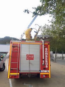 bomberos de aracena retiran un enjambre de abejas (1)