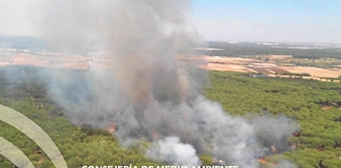 Incendio Almonte