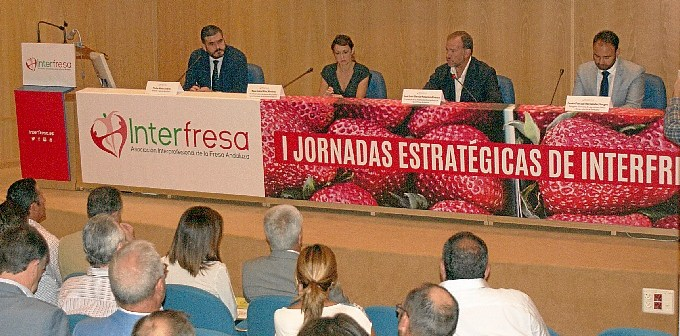 1 Jornada Estrategica Interfresa005
