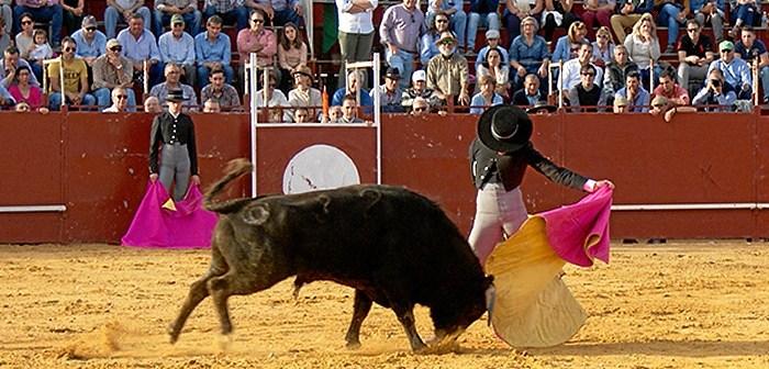 Festival Taurino en Villalba del Alcor (6)