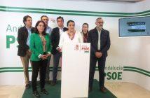 Responsables del PSOE en la zona del Condado
