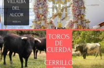 Cartel toros Calle Cerrillo