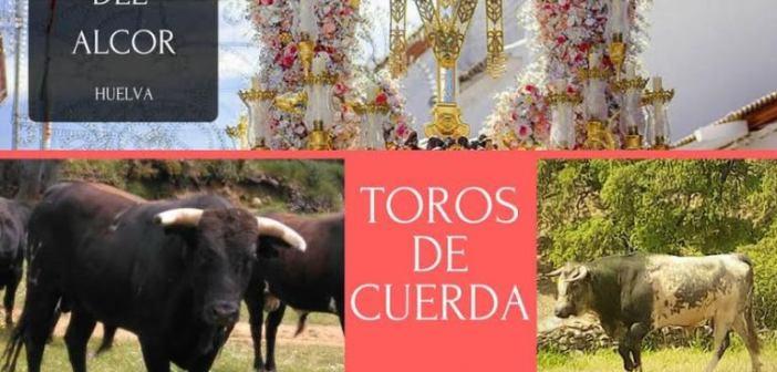 Cartel toros Calle Cerrillo