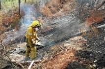 Imagen de archivo de un incendio en la provincia. (Foto: Plan Infoca)