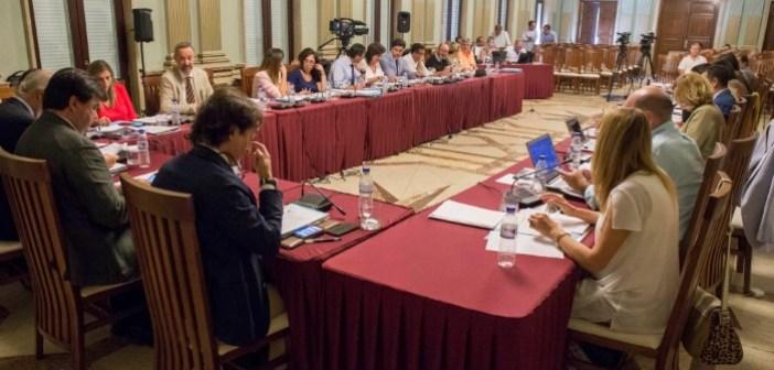 Pleno del mes de junio en Huelva (1)