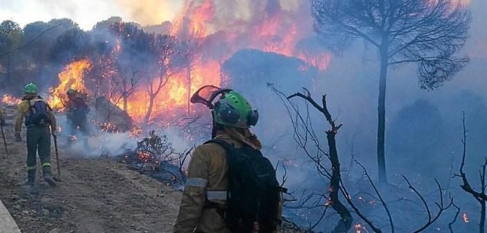 Incendio en Minas de Riotinto (2)