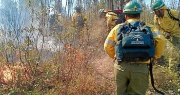 Imagen de archivo de un incendio forestal.  (Foto: Plan Infoca)